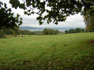 View from the grounds of Kilmahew Castle
