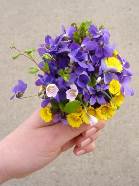 flowers-1-1398297